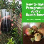 How to make Pomegranate Juice?