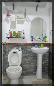 toilet-and-bathroom-design