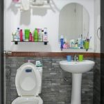 toilet-and-bathroom-design