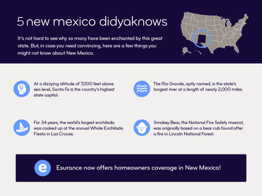 5 fun facts about New Mexico infographic.