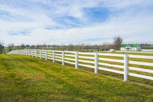 Picking the Right Material for Your Privacy Fencing