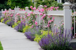 What are the Primary Differences Between Semi-Private Fences and Privacy Fences?