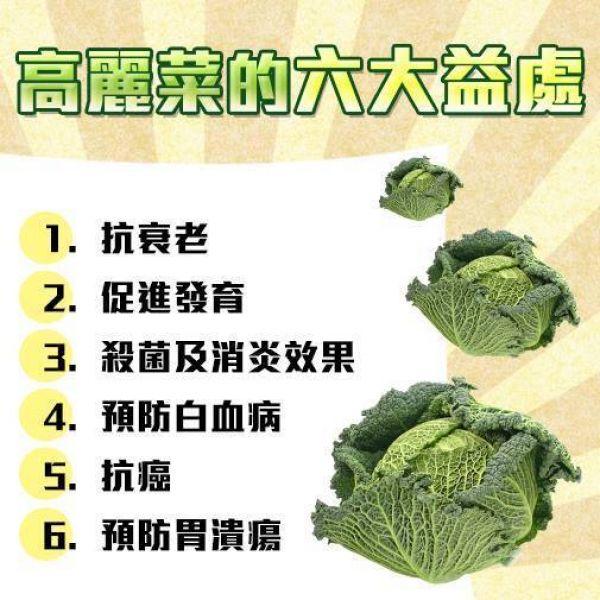 吃高麗菜的六大好處
