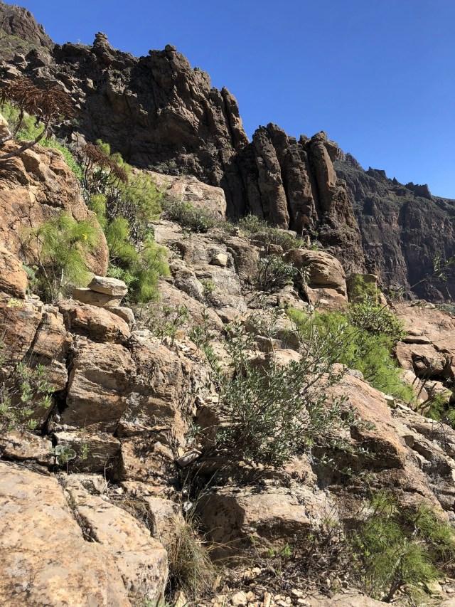Wanderweg Gran Canaria