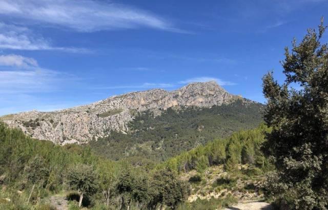 Puig Galazoó vor blauem Himmel auf Mallorca