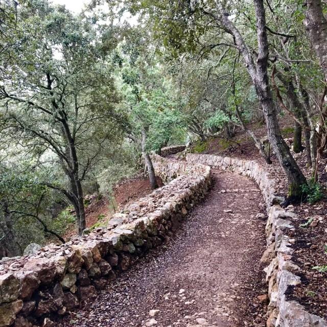 Auf dem Weg nach Esporles auf dem GR 221 passieren wir Trockensteinmauern