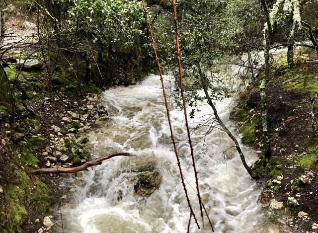 Wasserlandschaft auf dem Weg zum Kloster Lluc