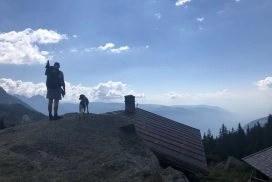 Hund Südtirol