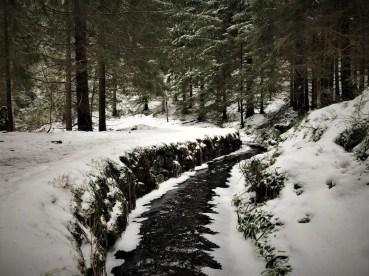 Januar im Harz