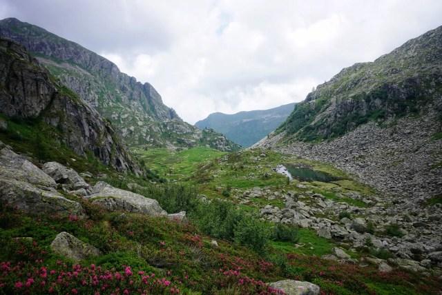 Adamello-Presanella-Alpen