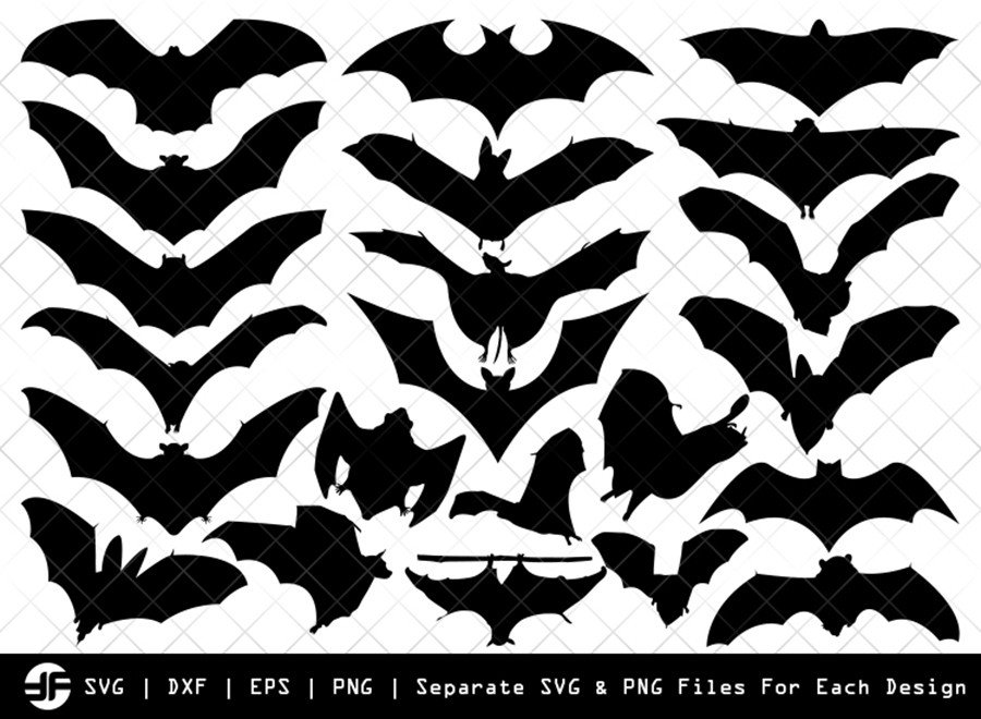 Bat SVG | Bat Silhouette | Bird Bundle | SVG Cut File