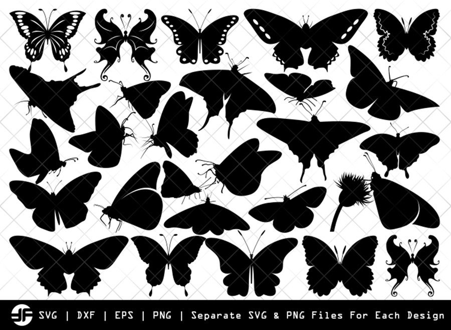Butterfly SVG | Insect SVG | Silhouette Bundle | SVG Cut File