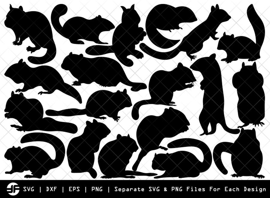 Chipmunk SVG | Animal SVG | Silhouette Bundle | Cut File