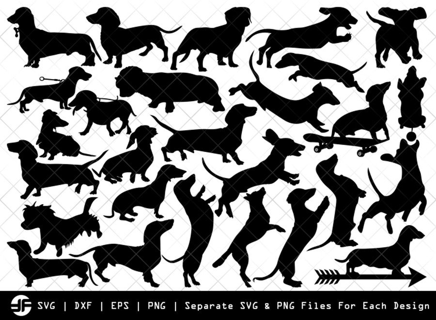Dachshund Dog SVG | Animal | Silhouette Bundle | Cut File