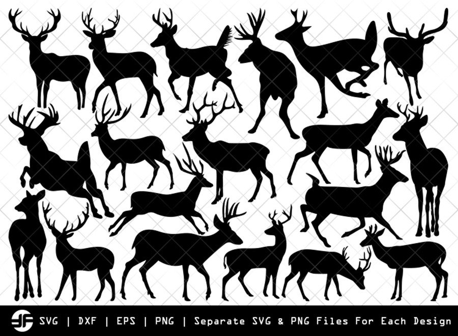 Deer SVG | Animal SVG | Silhouette Bundle | SVG Cut File