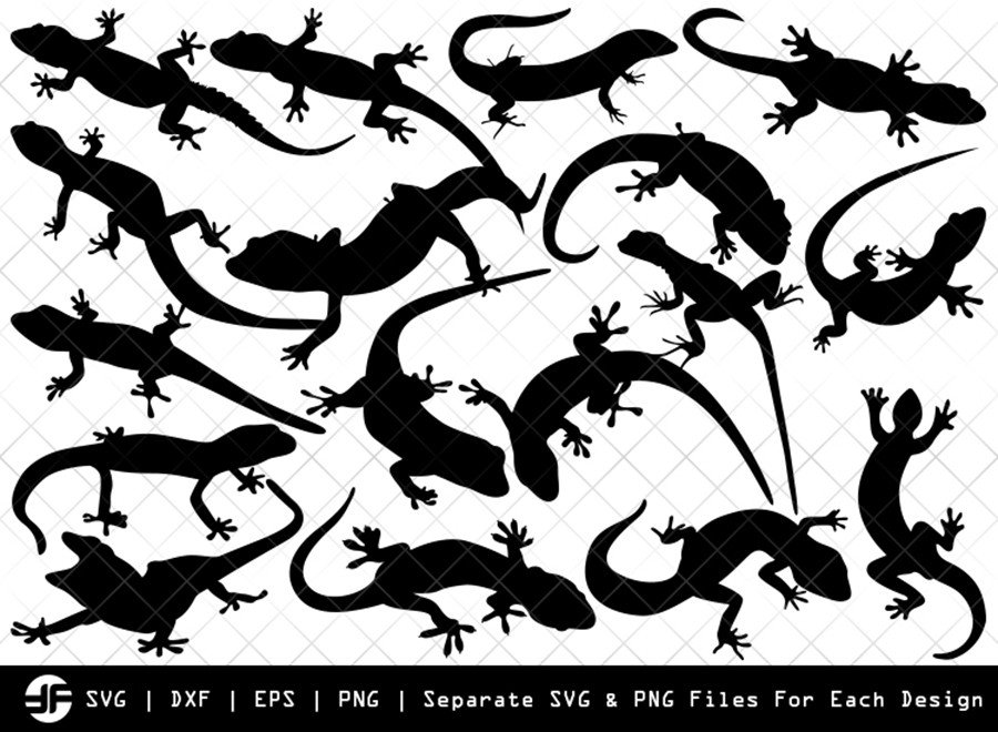 Gecko SVG | Lizard SVG | Silhouette Bundle | SVG Cut File