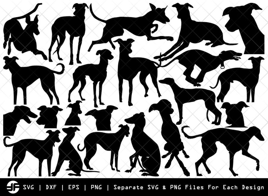 Greyhound Dog SVG | Animal | Silhouette Bundle | Cut File
