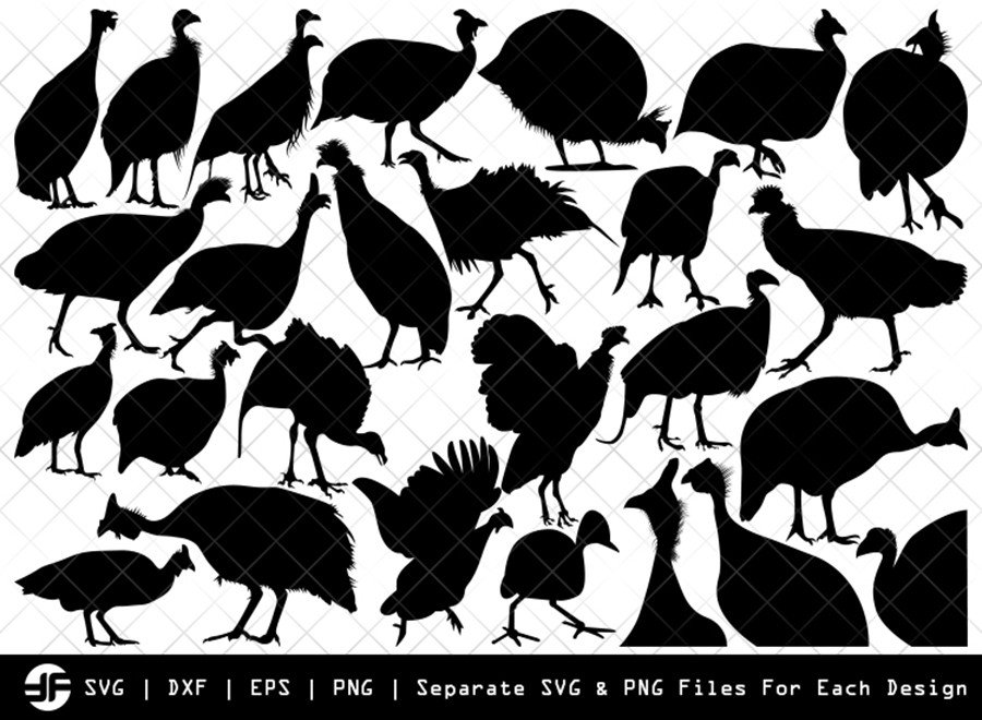 Guinea Fowl SVG | Animal SVG | Silhouette Bundle | Cut File