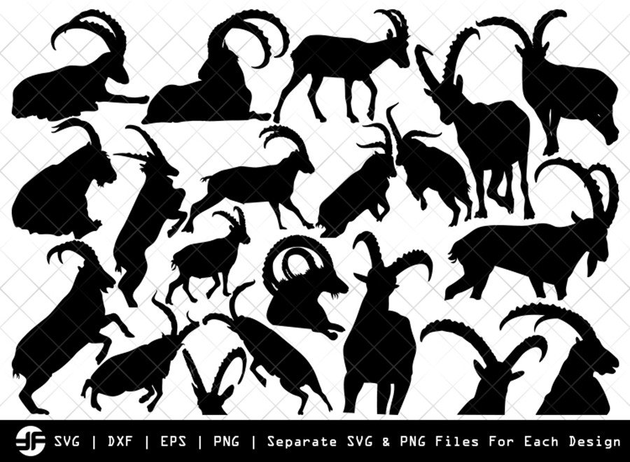Ibex SVG | Animal SVG | Silhouette Bundle | SVG Cut File