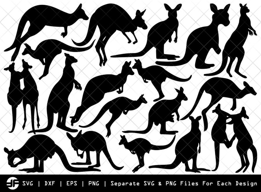 Kangaroo SVG | Animal SVG | Silhouette Bundle | Cut File