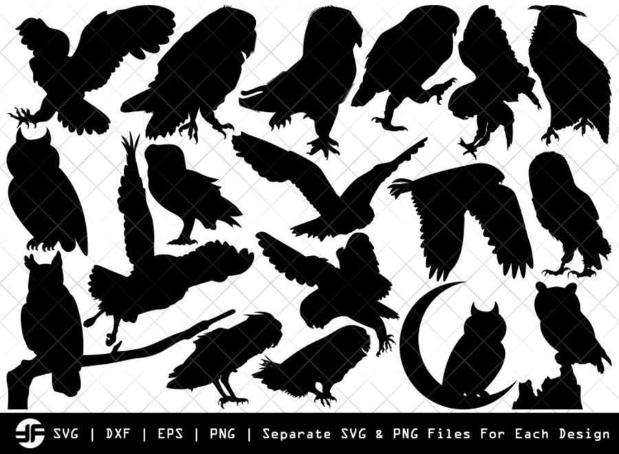 Owl SVG | Owl Bird SVG | Silhouette Bundle | SVG Cut File