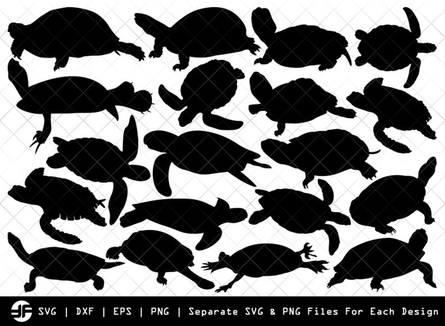 Turtle SVG | Animal SVG | Silhouette Bundle | SVG Cut File