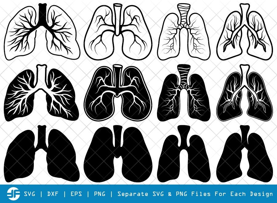 Human Lung SVG Cut Files | Human Lung Silhouette Bundle
