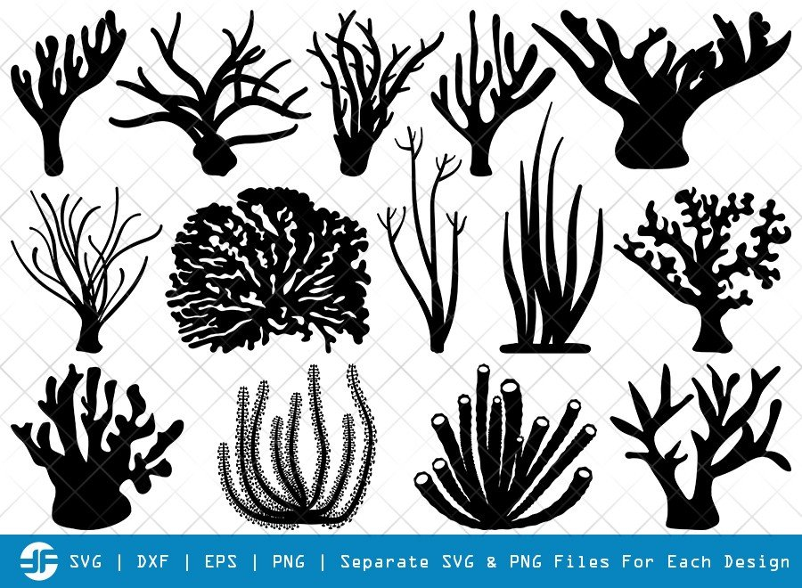 Corals SVG Cut Files | Seaweed SVG | Silhouette Bundle