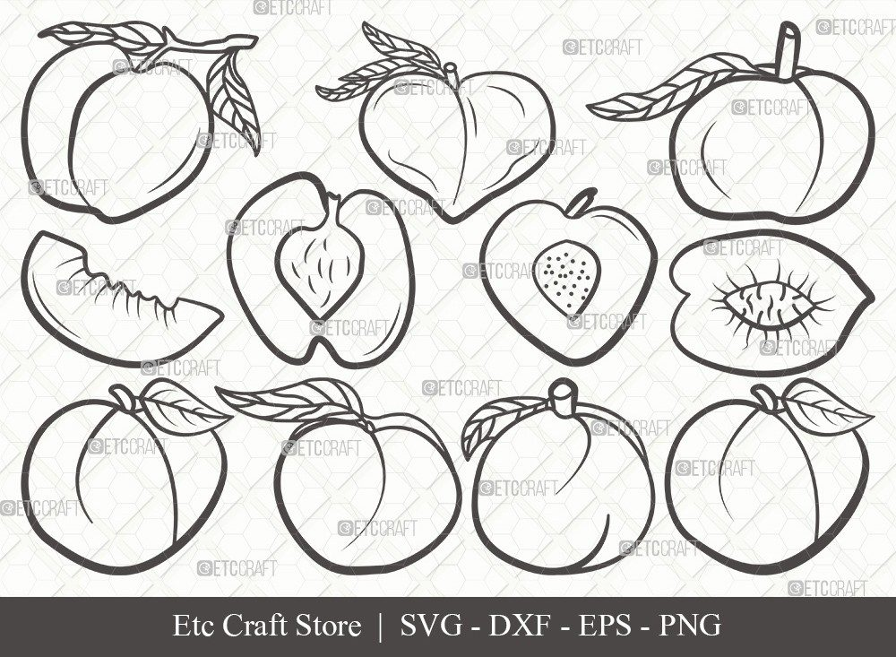 Peach Fruit Outline SVG Cut File