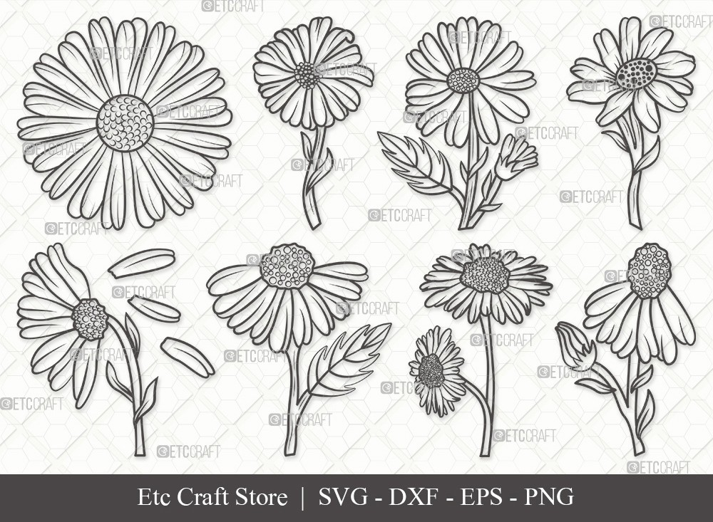 Daisy Flower Outline SVG | Daisy Flower Svg