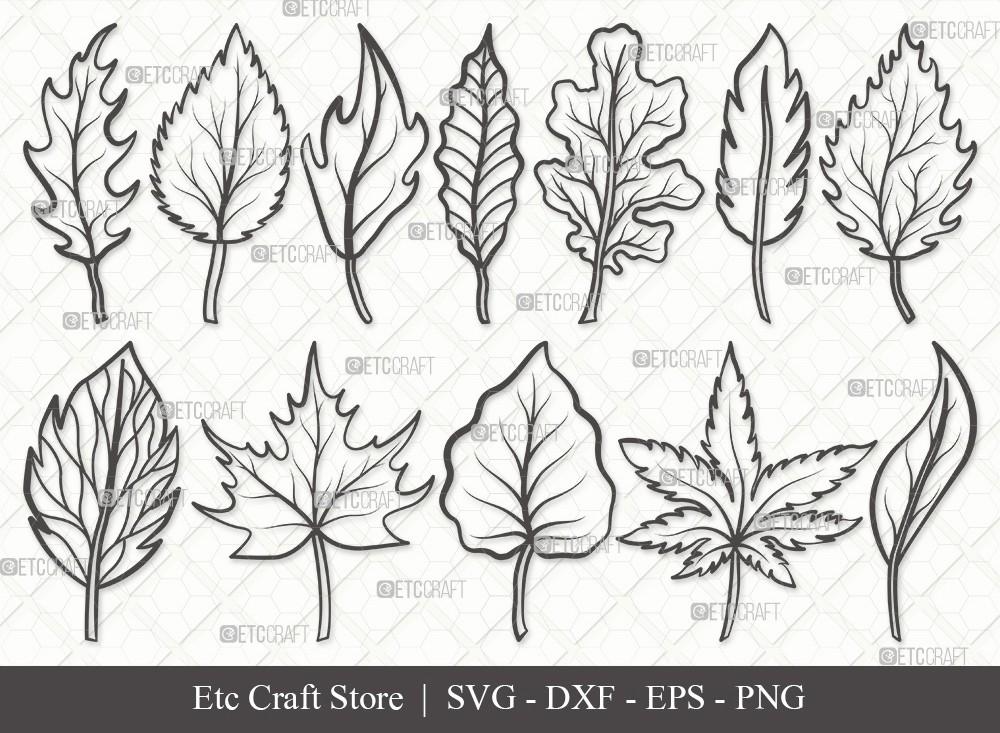 Fall Leaf Outline SVG | Fall Leaves Svg Bundle