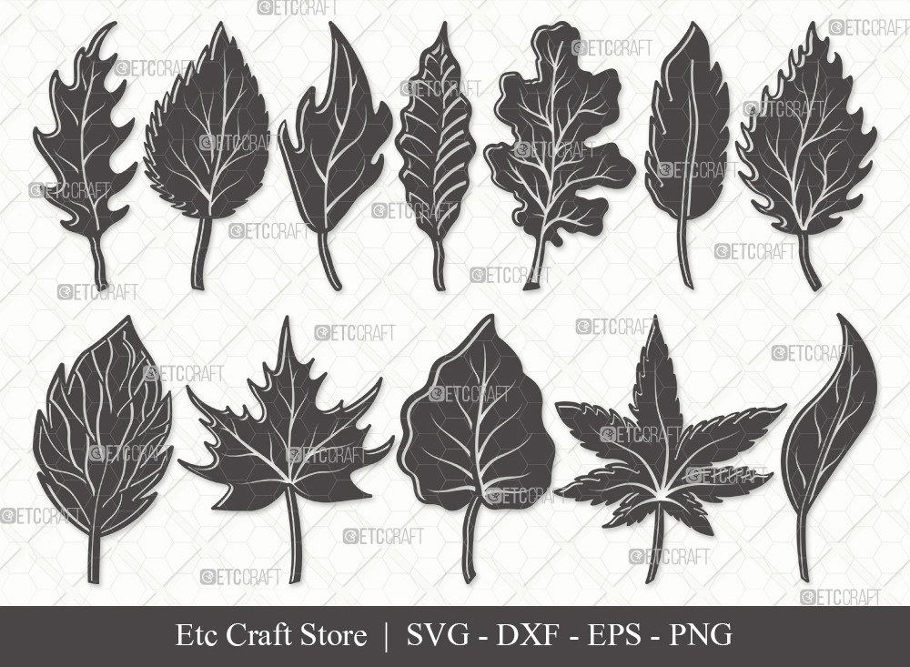 Fall Leaf Silhouette SVG | Fall Leaves Svg Bundle