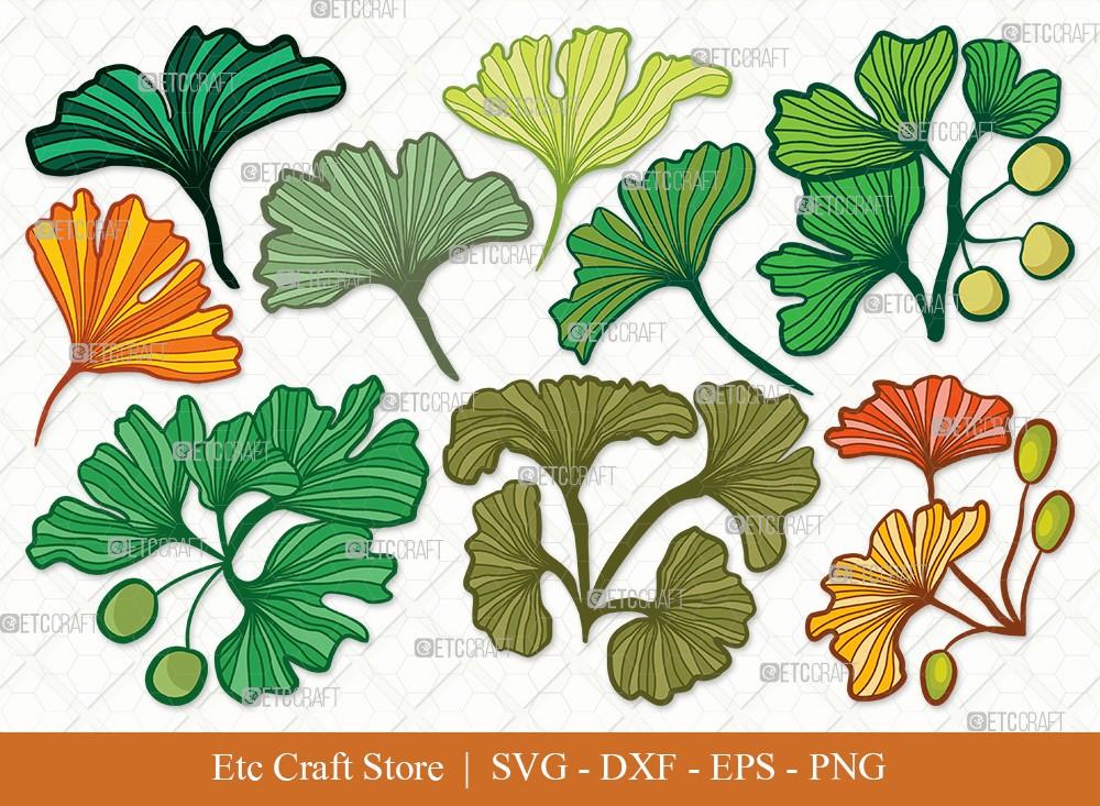 Ginkgo Leaves Clipart SVG | Ginko Biloba Svg