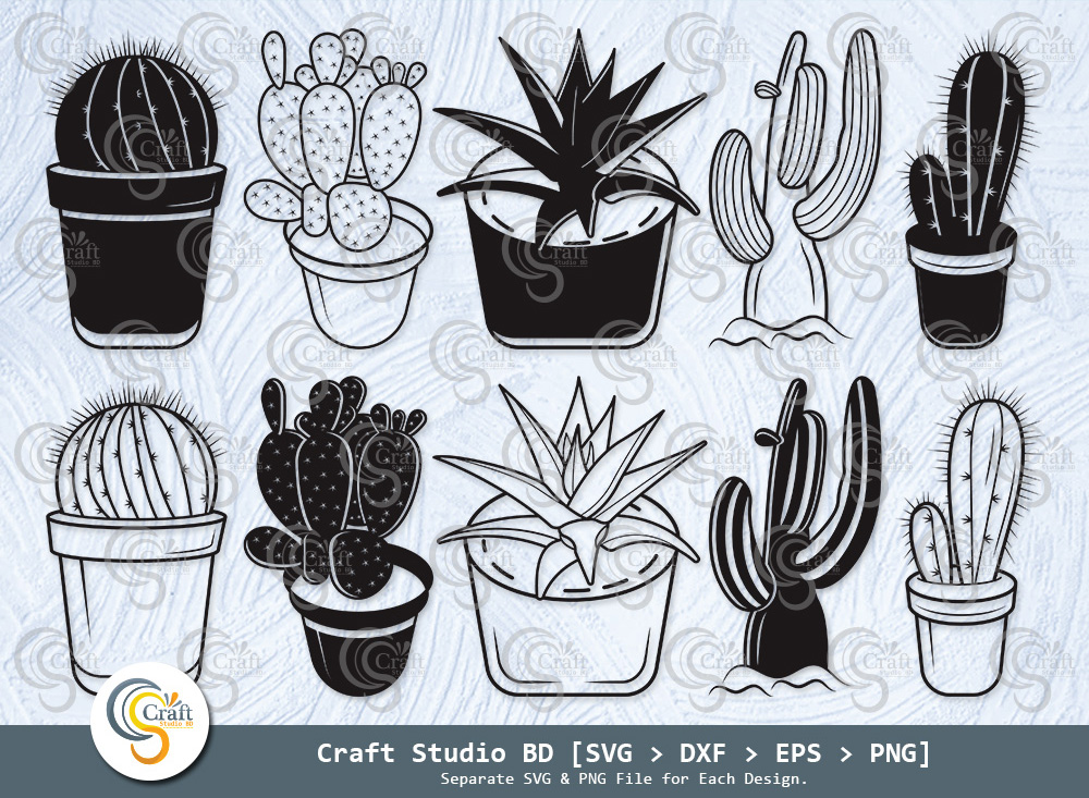 Cactus Silhouette, Succulent SVG, Cactus SVG