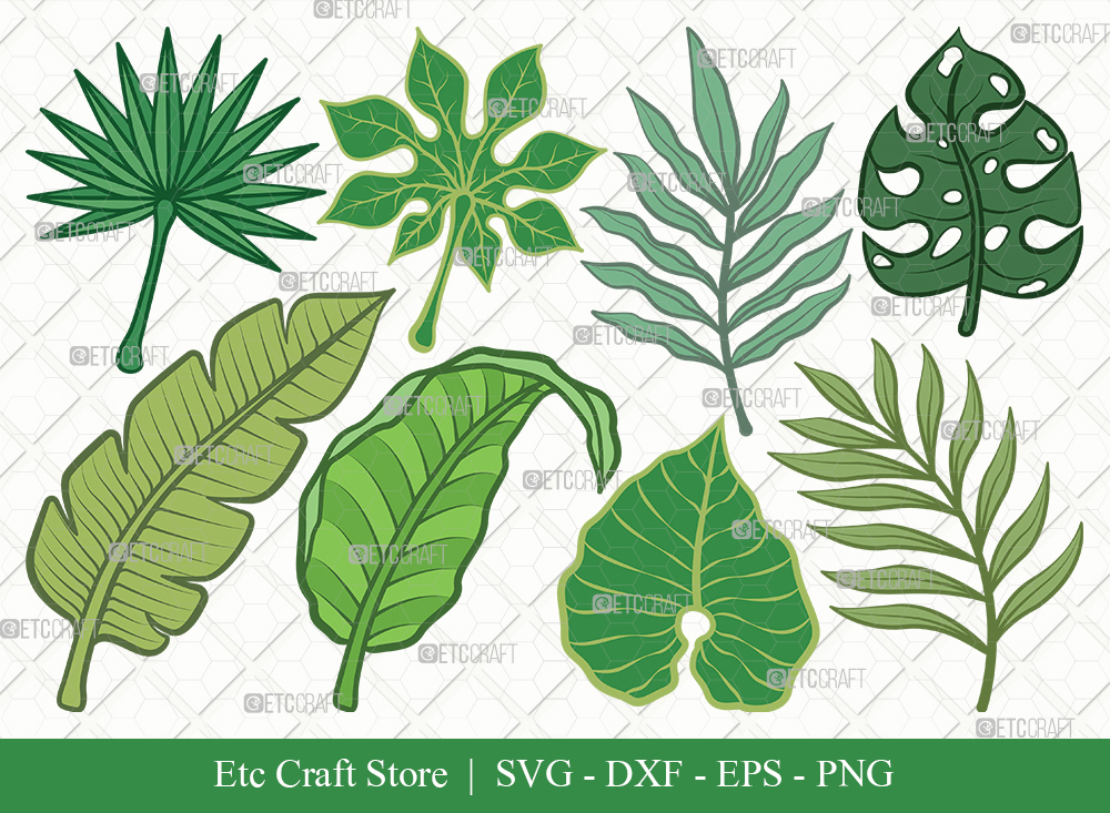 Tropical Leaf Clipart SVG   Monstera Leaf Bundle
