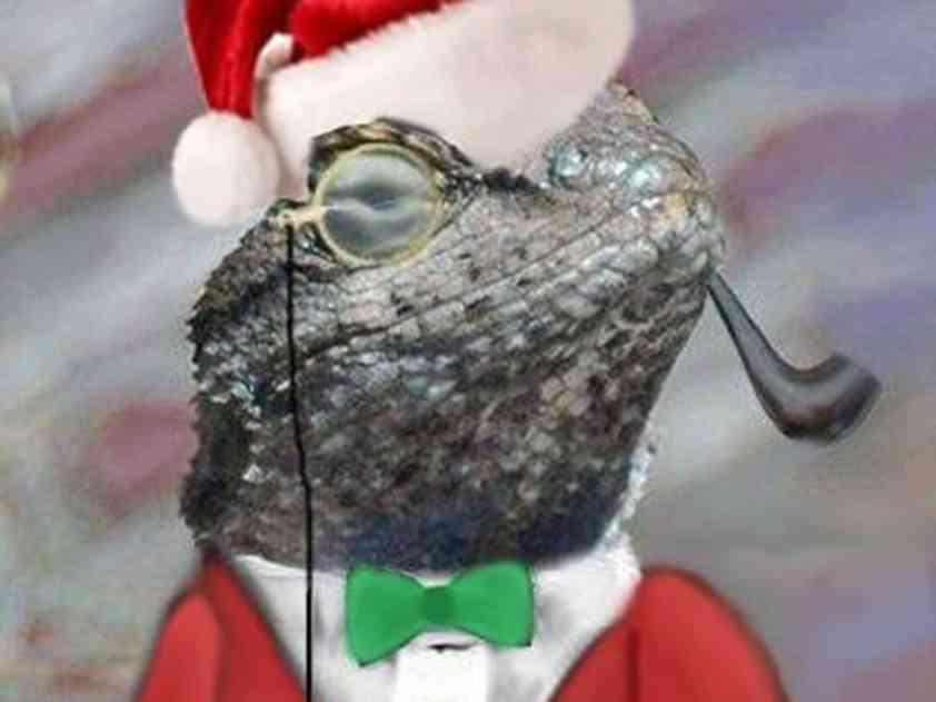 lizard-squadcrop