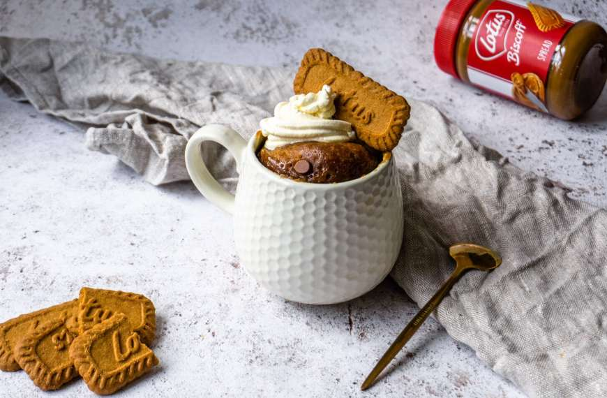 Microwave Chocolate Chip Biscoff Mug Cake Recipe