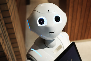 2017 – the year of the robot?