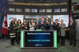 Mackenzie launches low-cost emerging markets local currency bond ETF