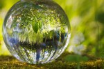 BlackRock launches actively managed climate & sustainable economy ETF