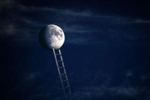 Moonshot ETF Direxion