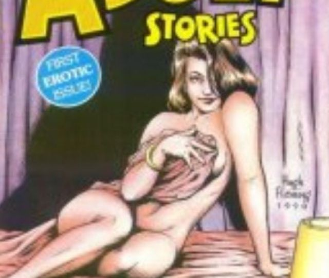 Spicy Adult Stories Comic Book Aircel 1 Front Image Front Cover