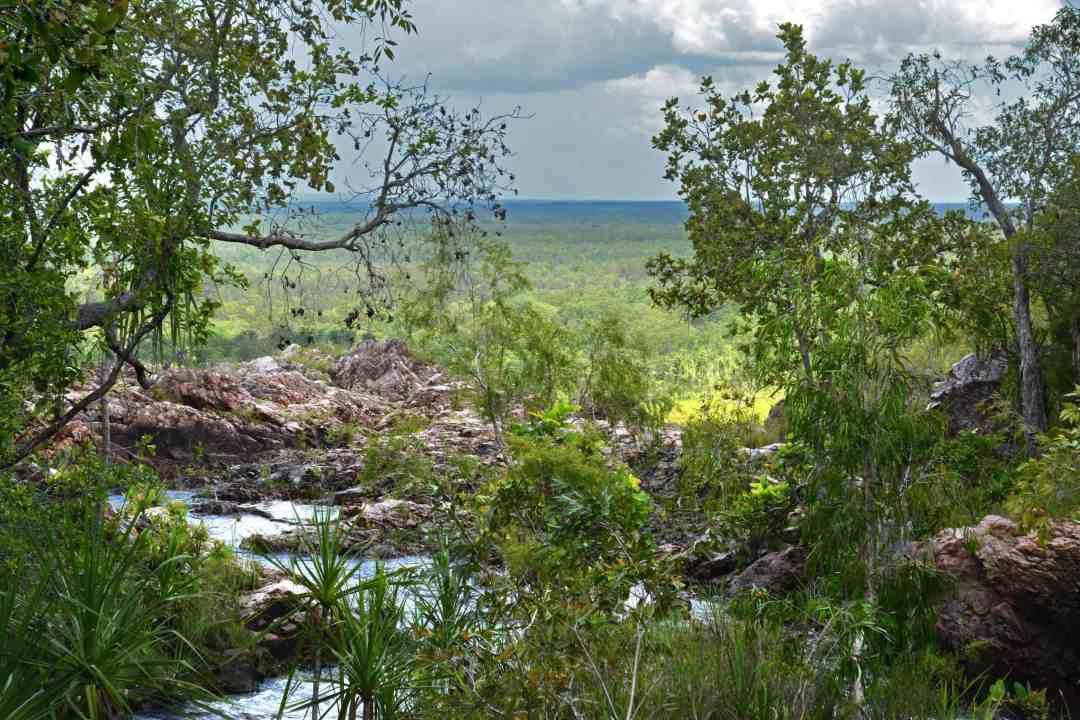 Wangi Falls lookout