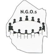 مؤسسات غیردولتی (NGO) و مسأله شناخت محلی