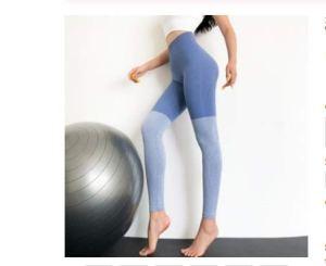 SuoSuo GWTRY Femmes Leggings 3 Couleurs Haute Elasticité Casual Taille Haute Solide Respirant Gym Fitness for Jambières (Couleur : Bleu, Taille : M)