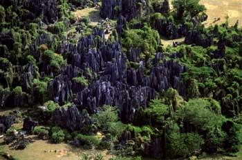 A cave in Bantimurung limestone massif