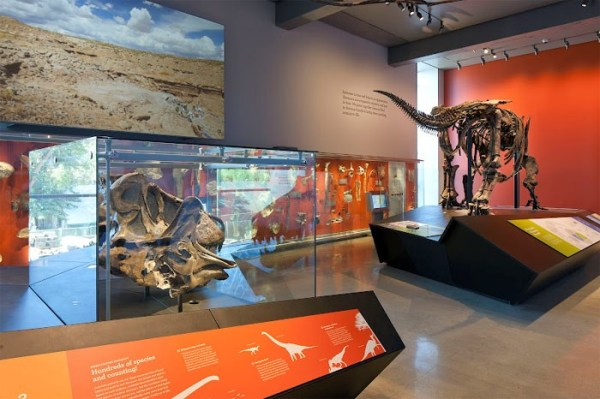 Natural History Museum of LA County Opens New Dinosaur ...