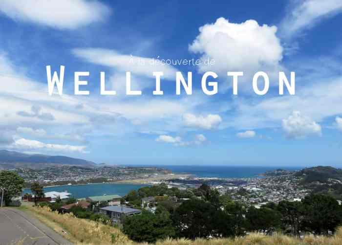 Nouvelle Zélande Wellington 2016 ©Etpourtantelletourne.fr