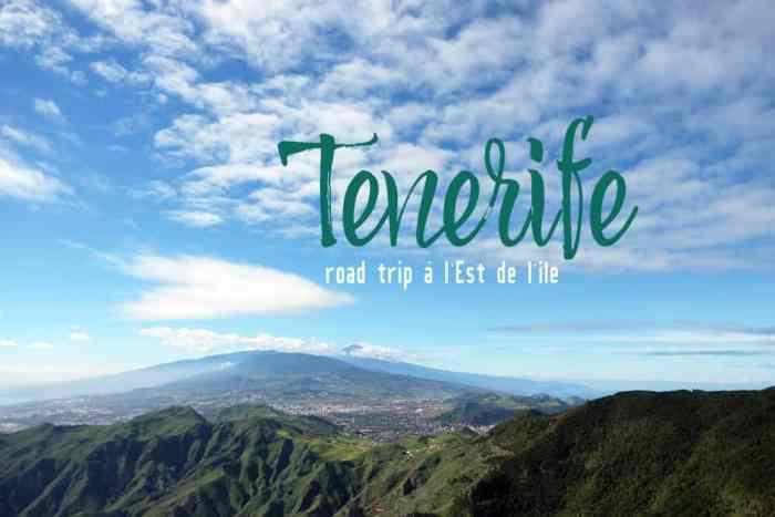 Tenerife Est 2017 ©Etpourtantelletourne.fr