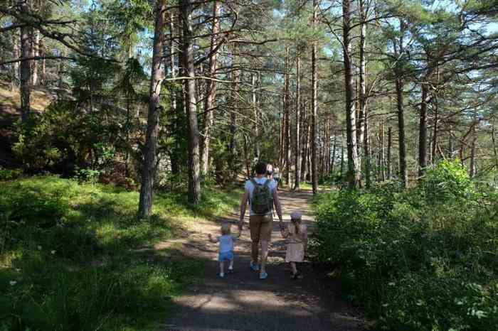 Randonner avec des enfants dans la réserve naturelle de Stendörrens  en Suède // ©etpourtantelletourne.fr